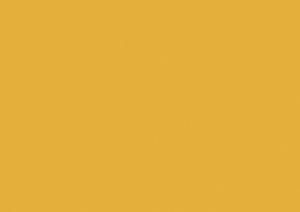 wJaune curry U163 ST9 300x212 Finitions